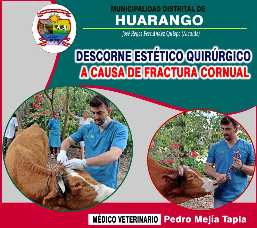 LA AGRICULTURA, LA REFORESTACION Y LA GANADERIA ES LA PRIORIDAD PARA EL ALCALDE JOSE REYES FERNANDEZ